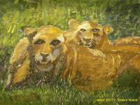 Семья львов